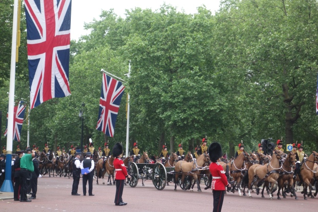 Trooping the Colour - Kanonen