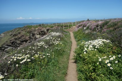 Coastal Path nach St Justinian Bay