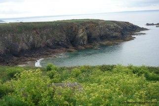 St. Davids_Coastal Path nach New Gale